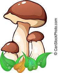 Illustration of white mushroom in the green grass