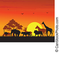 wild animal silhouette - illustration of wild animal...