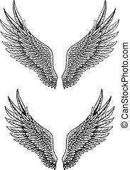 Wings tatoo - illustration of Wings tatoo