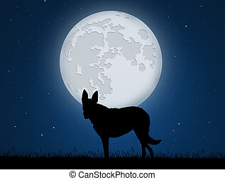 wolf in the moonlight