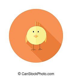 Yellow Chicken Flat Icon over Orange