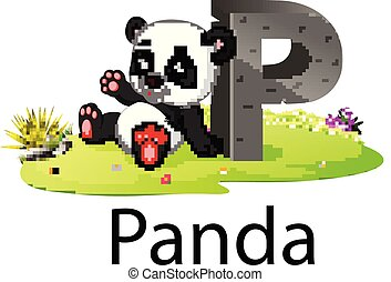 zoo animal alphabet P for Panda with the cute animal