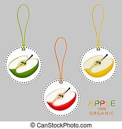 Illustration on theme big set different types round apples