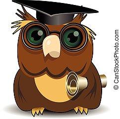 Owl scientist