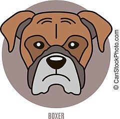 illustration portrait, boxer., vecteur