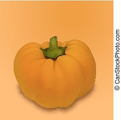 Pumpkin Vegetable with Shadow