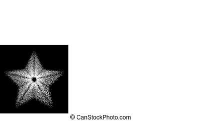 illustration., résumé, star., vecteur, conception, element.