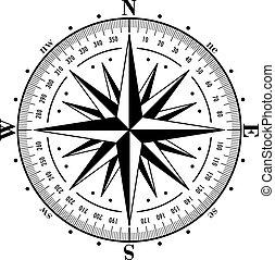 illustration., róża, odizolowany, wektor, white., busola