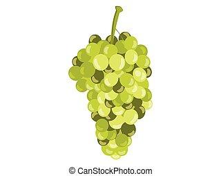 illustration., realistyczny, odizolowany, tło., wektor, zielone winogrona, biały