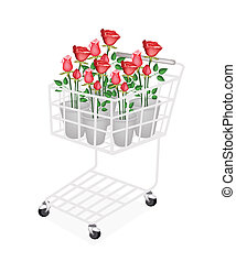 Illustration Red Roses in A Shopping Cart