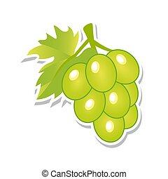 illustration., słodki, fruit., odizolowany, tło., wektor, zielony, grapes., biały, jagody