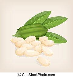 illustration, sesam, leafs., frukt, vektor, frö