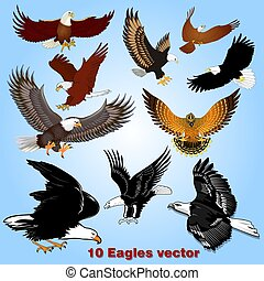 Illustration set of eagles in flight in the sky
