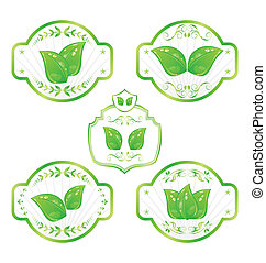 Illustration set of green ecological labels with leaves isolated on white background - vector