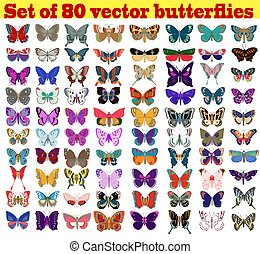 Illustration set of summer butterflies on a white background