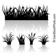 Illustration set silhouette of grass with reflection isolated on white background - vector