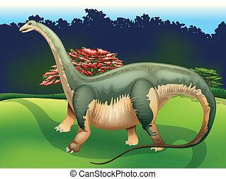 Apatosaurus - Illustration showing the Apatosaurus
