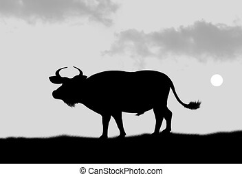 African buffalo - illustration, silhouette of male African ...
