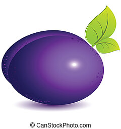 illustration, single ripe violet plum on white background
