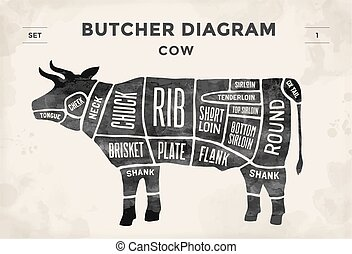 illustration., -, slager, vector, hand-drawn., knippen, ouderwetse , plan, cow., typografisch, set., poster, vlees, diagram