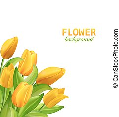 Spring Beautiful Flower Card with Yellow Tulips