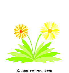 Illustration spring flowers