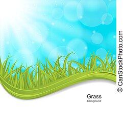 Summer Natural Postcard with Green Grass