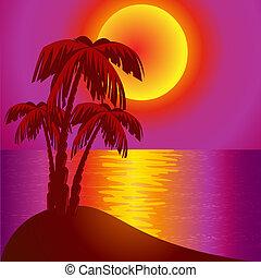 sundown on background epidemic deathes and palms -...