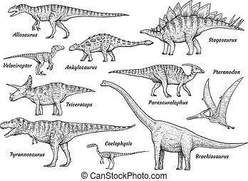 illustration, teckning, kollektion, gravyr, dinosaurie, vektor, bläck, fodra konst