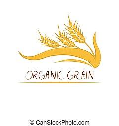 illustration., trigo, centeio, -, etiqueta, vetorial, fundo, branca