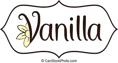Illustration vanilla flower with text .Vector