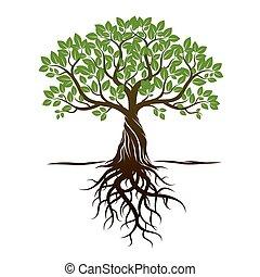 illustration., vecteur, arbre, couleur, roots.