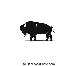 illustration, vecteur, bison, gabarit, logo, icône