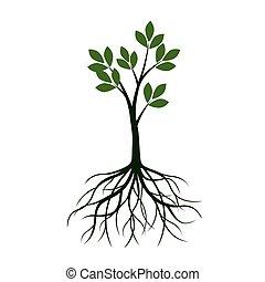 illustration., vector, árbol, leafs, roots., verde
