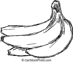 illustration vector doodle hand drawn of sketch banana bunch isolated.