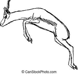illustration vector hand draw doodles of gazelle jumping isolated on white background.