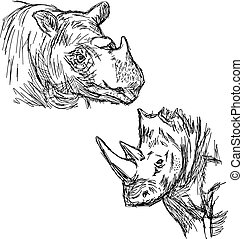 illustration vector hand drawn doodle closeup rhinoceros isolated on white.