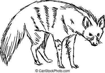 illustration vector hand drawn of aardwolf isolated on white background.