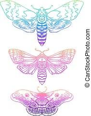 illustration., vector, spirituality., neon, composition., mooi, psychedelic, moth, geestelijk, tatoeëren, set., ouderwetse , yoga, boeddhisme, helling, indiër