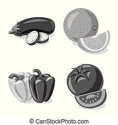 illustration., vegetariano, simbolo., frutta, verdura, vettore, illustrazione, collezione, casato