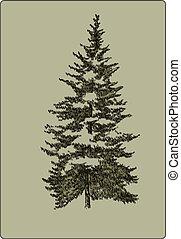 illustration., vendange, arbre, vecteur, hand-drawing., noël