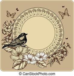 illustration., vendange, cadre, vecteur, roses, fleurir, phlox., oiseau