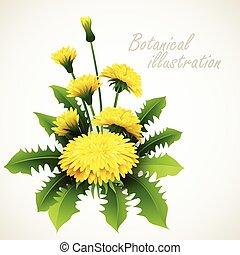 illustration., vendange, vecteur, floral, botanique, carte