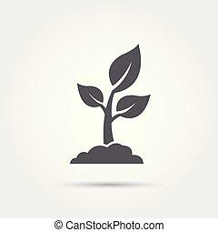 illustration., vetorial, ícone, semente, seedling, silhouette., processo