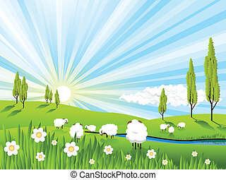 illustration, white sheeps on pasture on solar sky