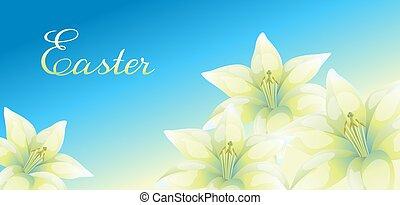 illustration., wielkanoc, lilies., karta, powitanie