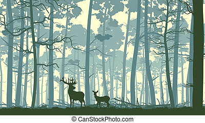 Illustration wild animals in wood. - Vector abstract...