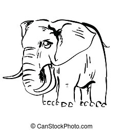 elephant - illustration with elephant for your design