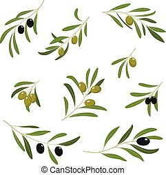 Illustration With Green and Black Olives