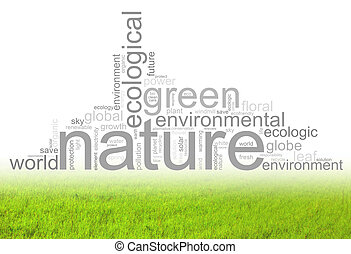 Illustration with terms like natur or environment -...